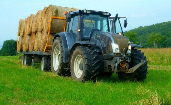 Dein Job als Landwirt/in im Feldbau